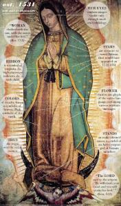 Our Lady of Guadalupe~