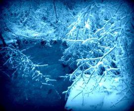 ICE STORM~