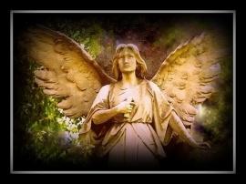 _ANGEL_